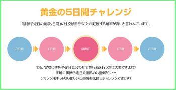 5日間チャレンジ シリンジ法.jpg
